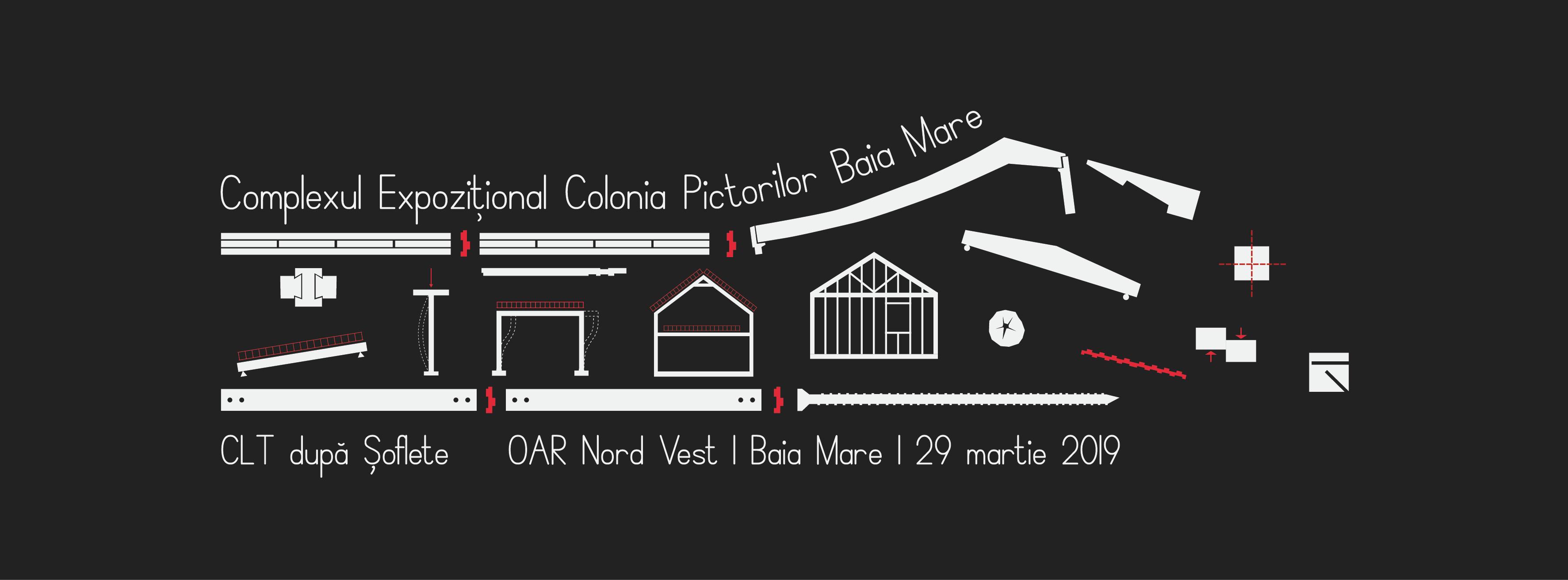2019.03.22_Afis facebook lemn Baia Mare-01